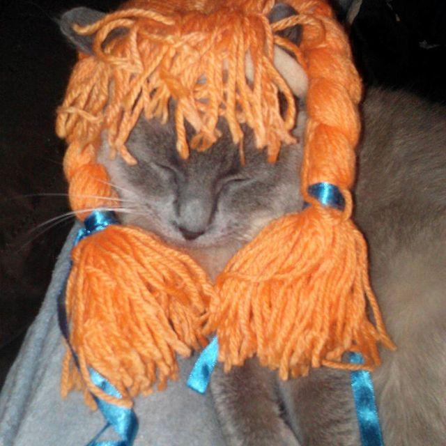 Kitty Longstocking